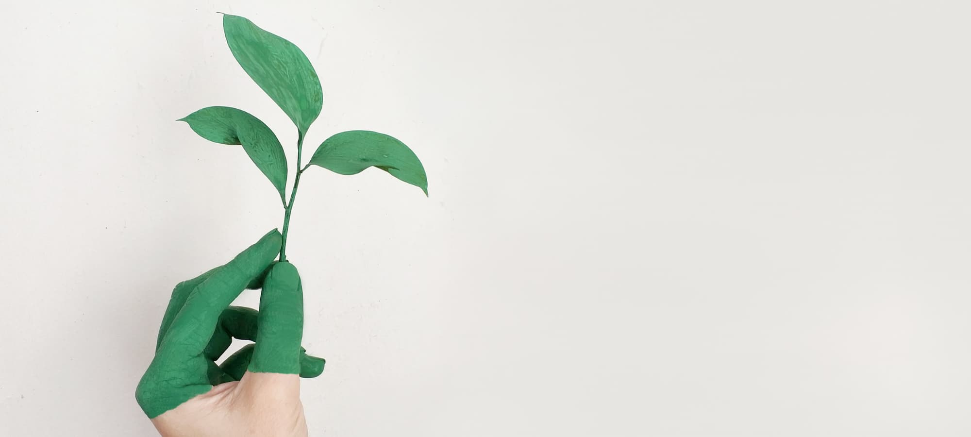 a hand painted green holding a small plant