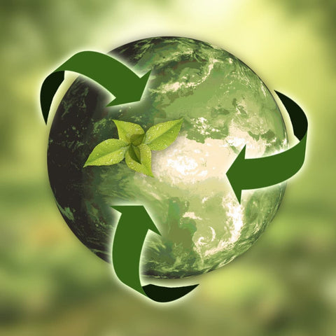 computer image of a green planet Earth with a plant and arrows to represent sustainability