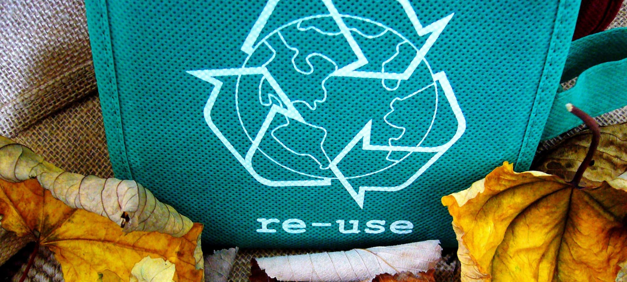 """a green bag that says """"re-use"""" and autumn leaves"""