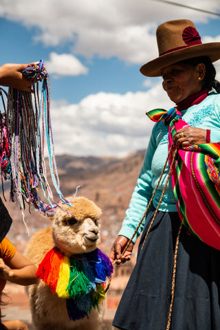 a native Peruvian woman in colorful clothing with an alpaca