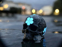 Load image into Gallery viewer, Badger Blossom SkullRing Limited Edition