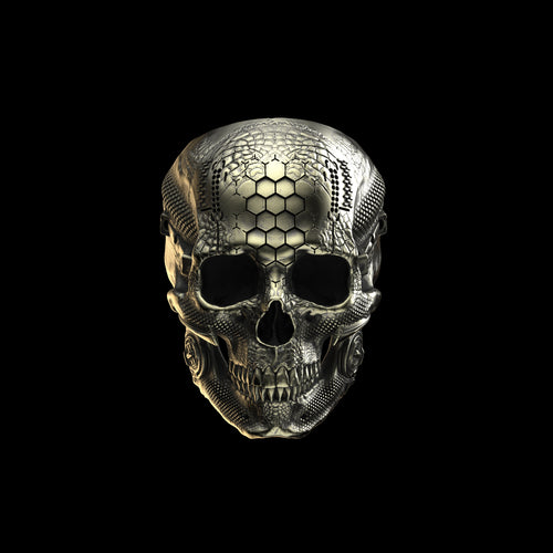 Bronze TechSkull.1 Ring