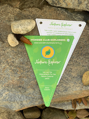 Nature Explorer Merit Patch, Pennant & Activity Prompt