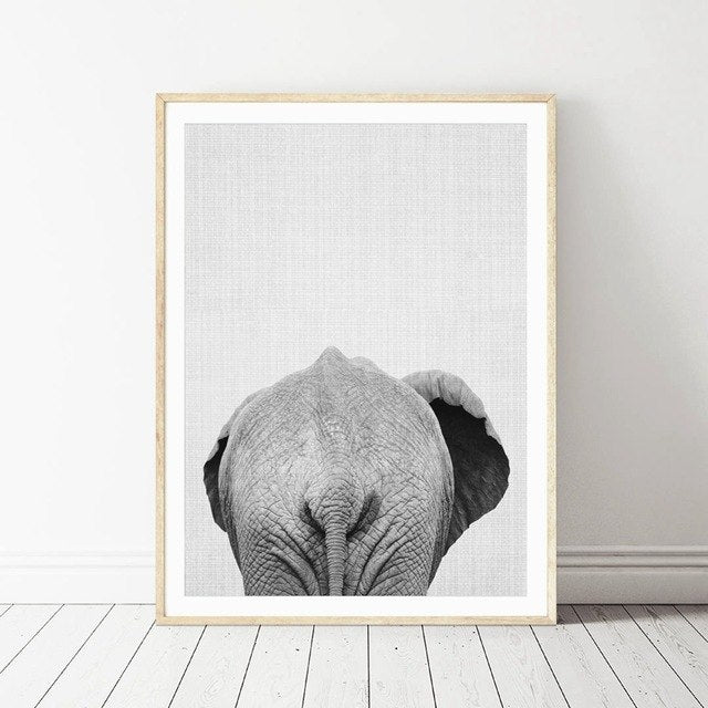 Elephant Canvas Print Modern Decor