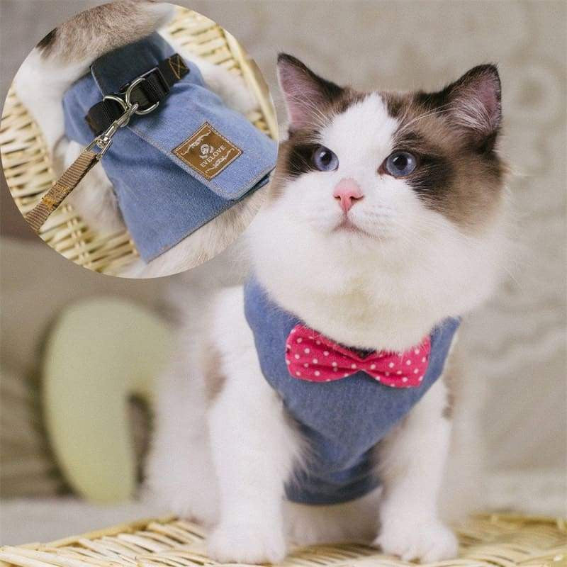 Adjustable Cat Harness, Bowtie Cat Suit And Leash