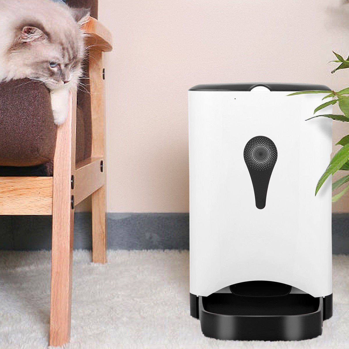 Automatic Power Operated Pet Feeder - petshoppee.com