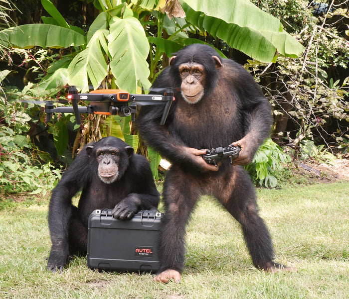 Drones Donated to Monitor Wildlife