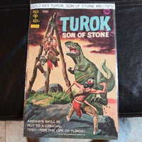 Turok The Son Of Stone #80 HIGH GRADE - Gold Key Comic (1972)