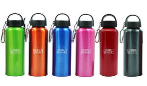 Stainless Steel Drinking Bottle With Broad Handle And Clip