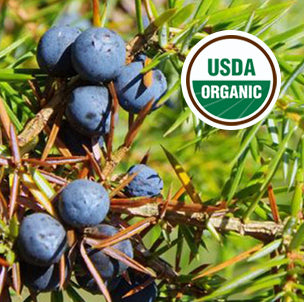 Juniper Berry Oil - USDA Organic