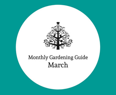 The Monthly Gardening Guide: March