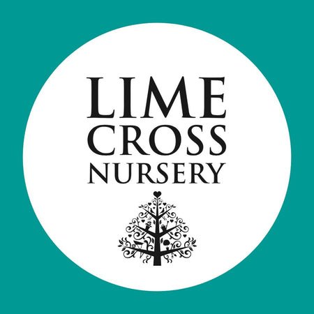 An Update On How We're Dealing with Covid-19 at Lime Cross Nursery and Olive's Café