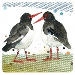 Oyster Catchers Coaster By Alex Clark