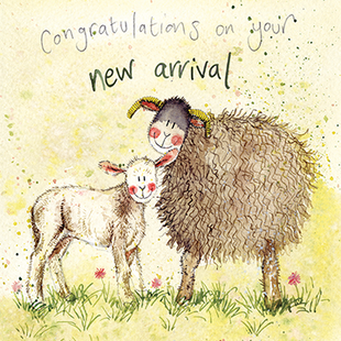 Lamb New Arrival Card By Alex Clark