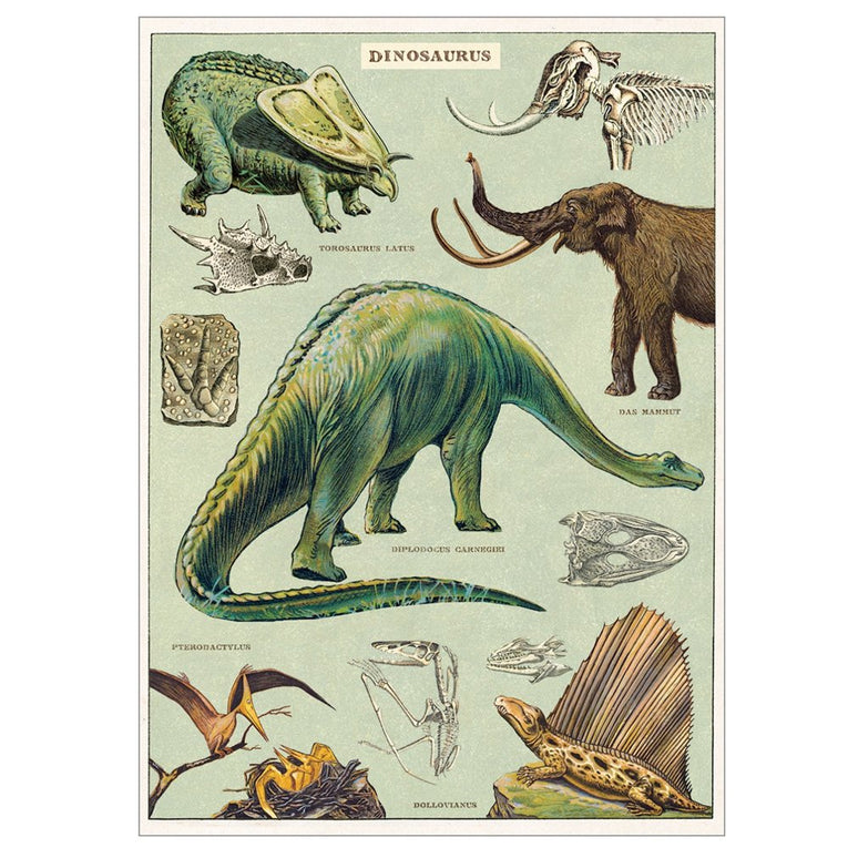 Dinosaur Wrapping Paper or Poster