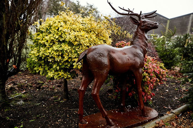 Standing Majestic Stag Statue Facing Left Right or Forward - Bronze