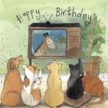 Squares Eyes Dog and Cats Watching TV Card By Alex Clark