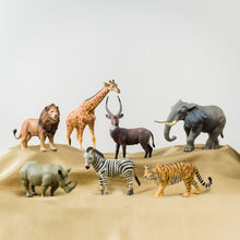 Load image into Gallery viewer, PREORDER: CollectA Wildlife Animals Set