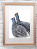 Framed Art - Outback Guineas | Meadow Art Collective