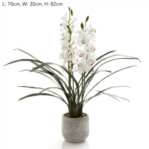 Faux Orchid Cymbidium in Pot