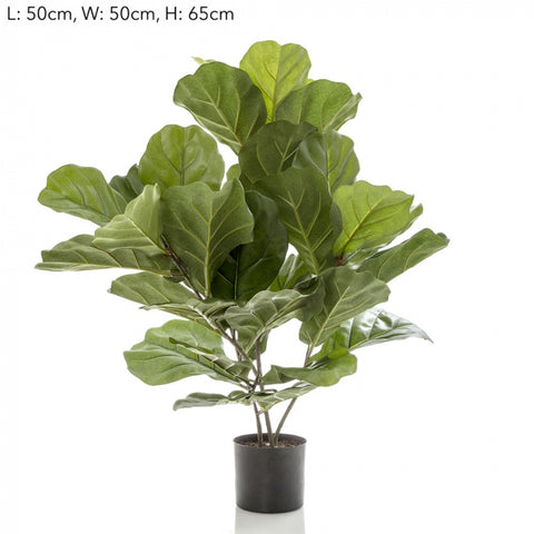 Faux Fiddle Leaf Fig