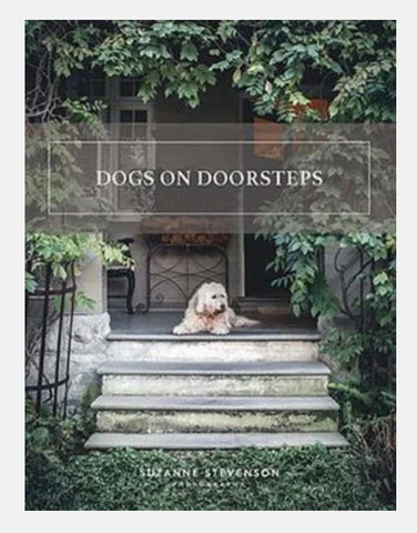 Dogs on Doorsteps | Suzanne Stephenson