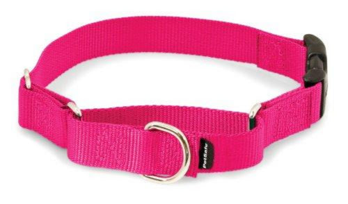 PetSafe Martingale (No-Slip) Collar with Quick Snap Buckle (Assorted Colors)