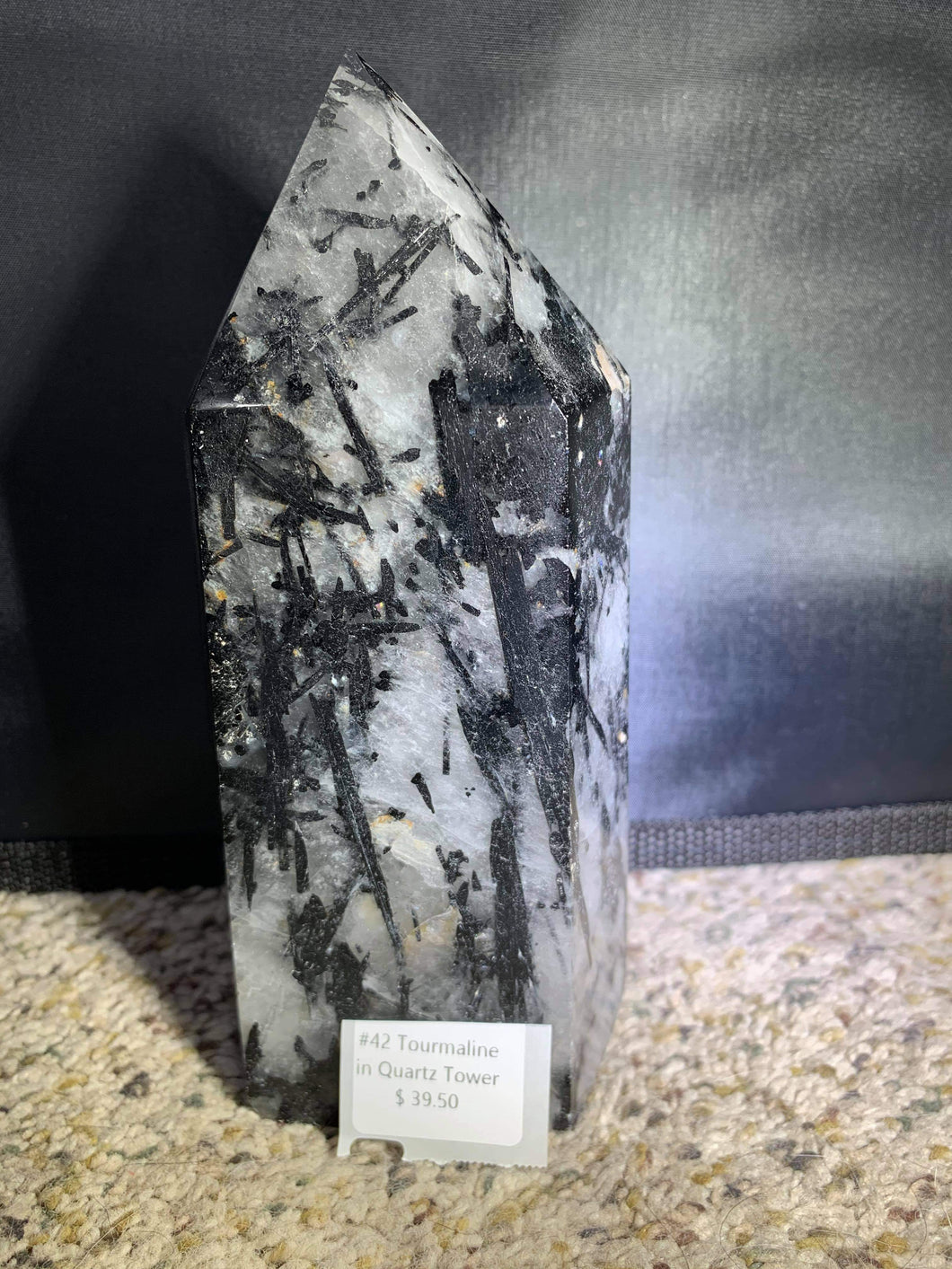 Black Tourmaline in Quartz - Wellness Underground