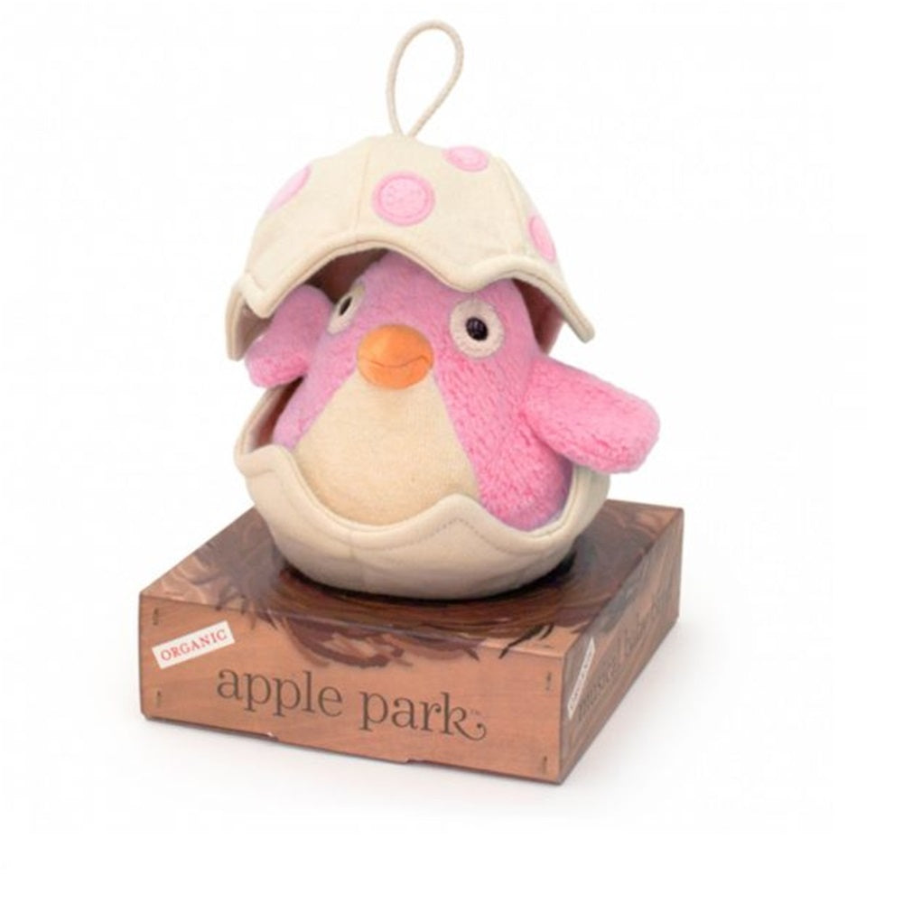 Musical Baby Birdy Pull Toy