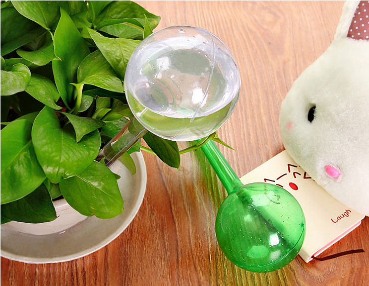 Watering Plant Glass Bulbs (buy three pcs get shipping free)