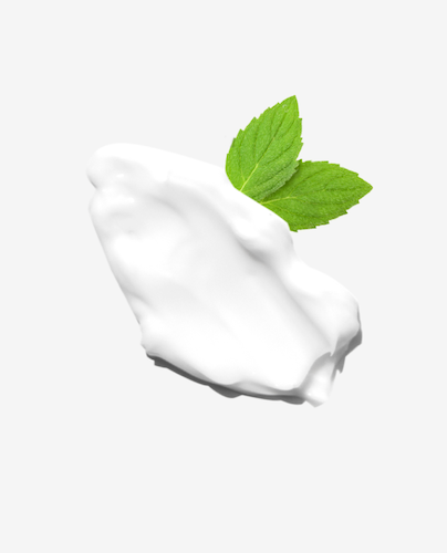 Vanilla Mint Lotion 1.5oz