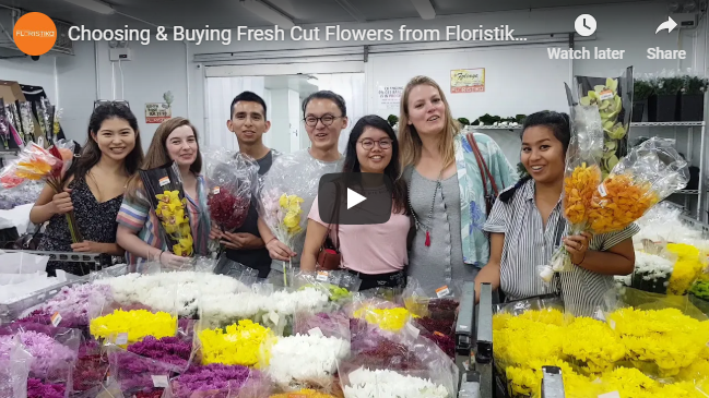 Choosing & Buying Fresh Cut Flowers from Floristika's Walk-In Cold Room