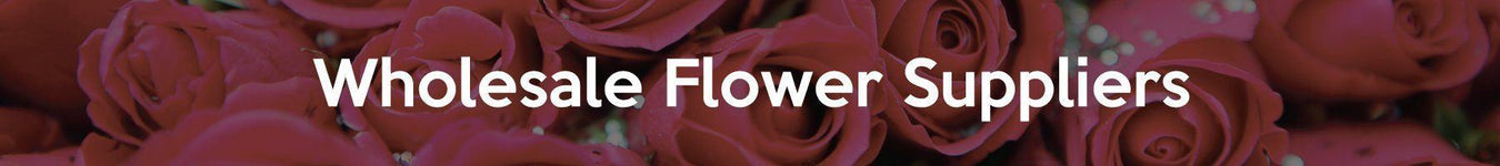 Wholesale Flower Suppliers Malaysia - Widest Range oF Fresh Cut Flowers