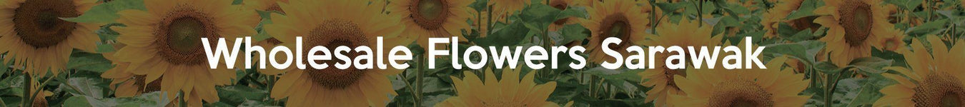Wholesale Flowers Sarawak - Fresh Cut Flowers In Bulk