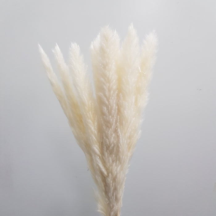 Reed Flower - White