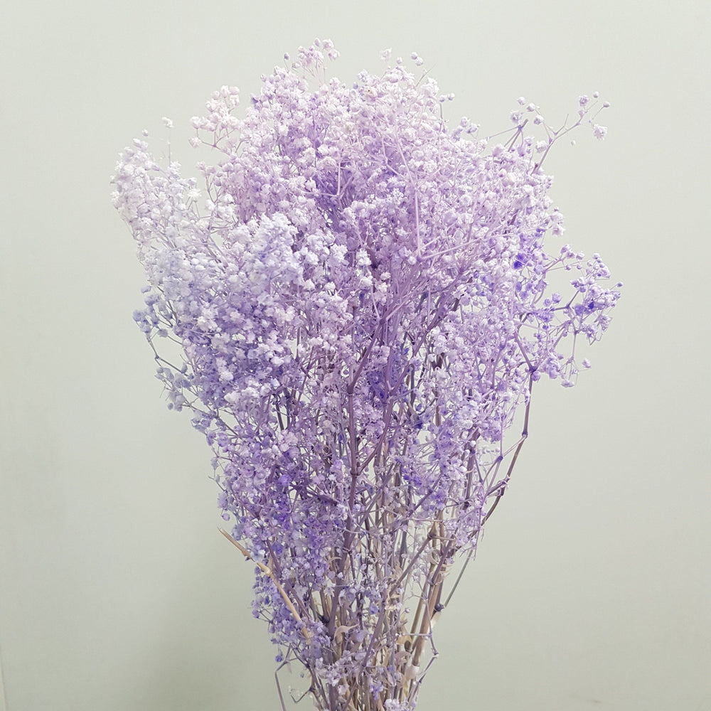 Dream Flower - Light Purple