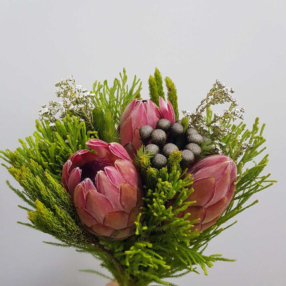 Protea Budget Bouquet (Imported)