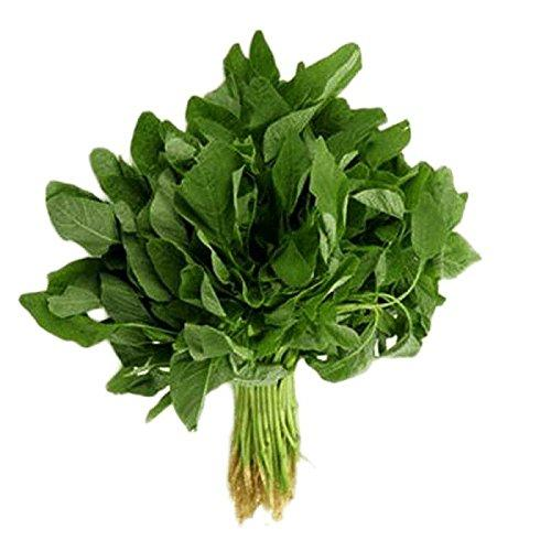 Organic Baby Spinach Green