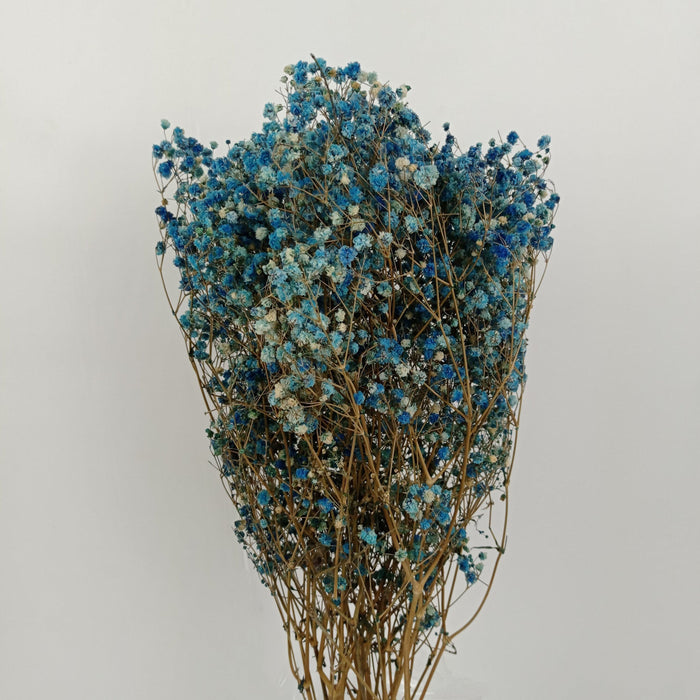 Baby Breath Dried Flowers/ Fillers (Imported) - Blue