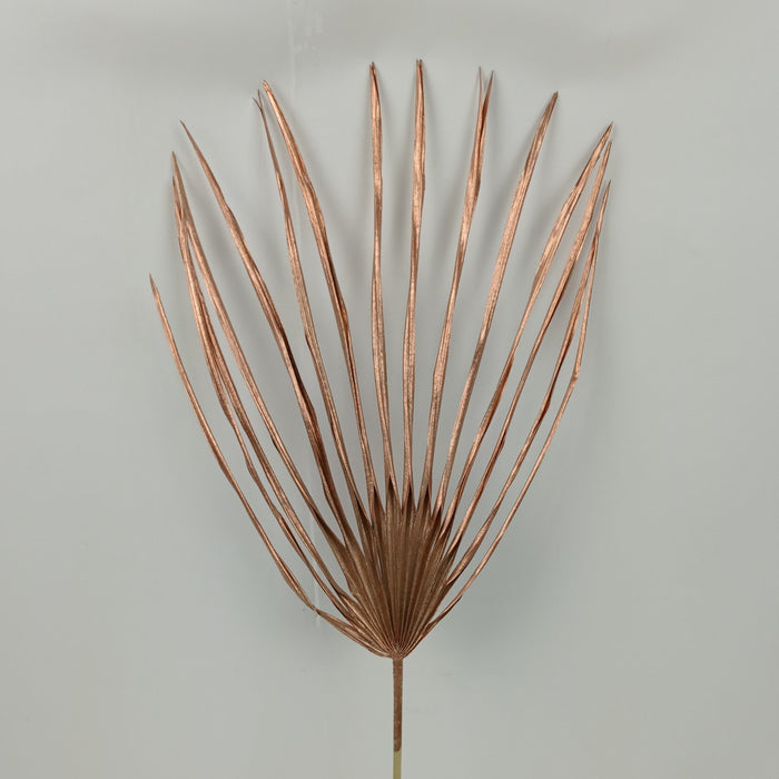 Palm Leaf Copper - Copper