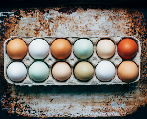 Cage-Free vs. Free-Range vs. Organic Eggs: The Difference Between Egg Labels