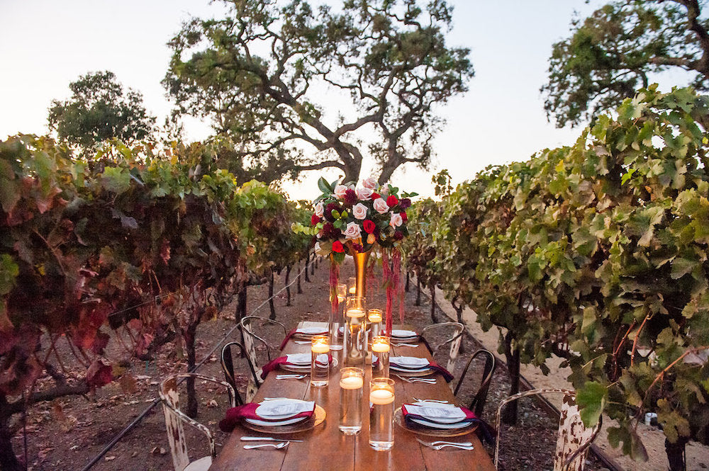 outdoor vineyard wedding - tips for working from home and planning wedding from The Garter Girl