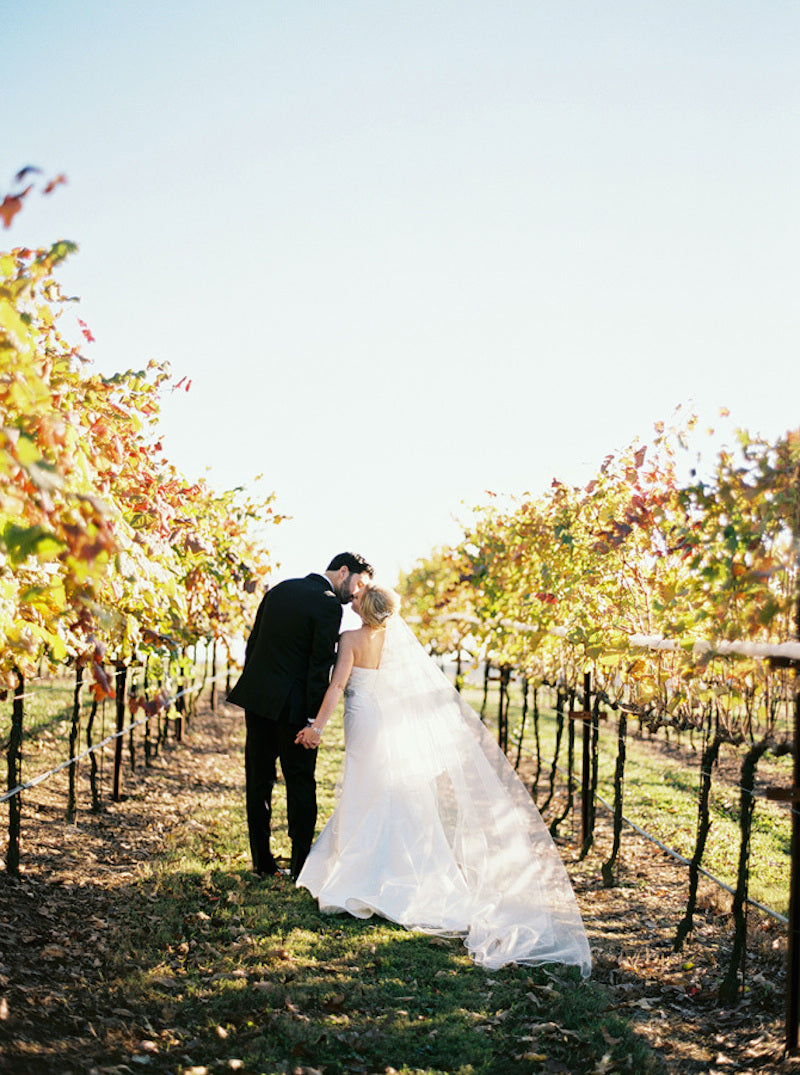vinyard-elegant-southern-wedding-amy-arrington-photography