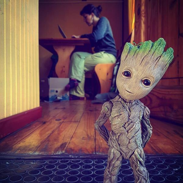 bébé groot collector