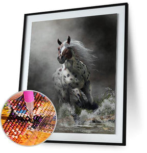 Appaloosa - by Daniel Eskridge Daniel Eskridge