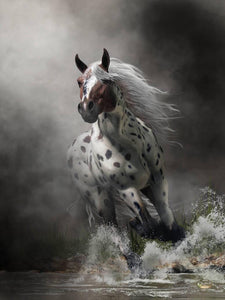 Appaloosa - by Daniel Eskridge - Diamond Painting Kit