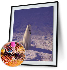Arctic Wolf 5DArtist