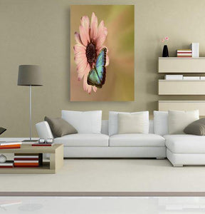 Beautiful Butterfly 5DArtist
