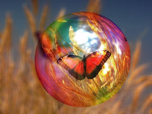 Butterfly Bubble - Diamond Painting Kit