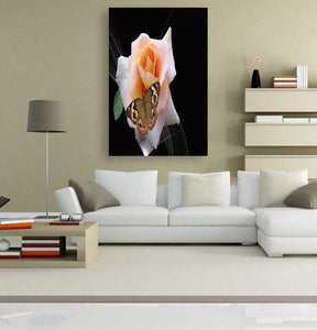 Butterfly Rose 5DArtist